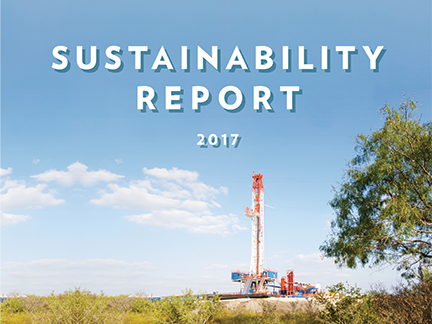2017 Sustainability Report cover