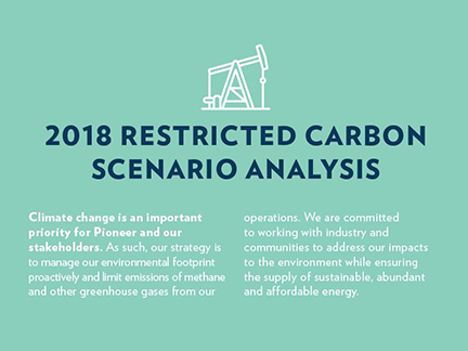2018 Restricted Carbon Scenario Analysis cover